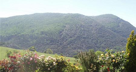 vue principale