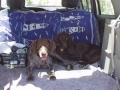 Vick et Bella : nous nous sommes packssés en colo !!